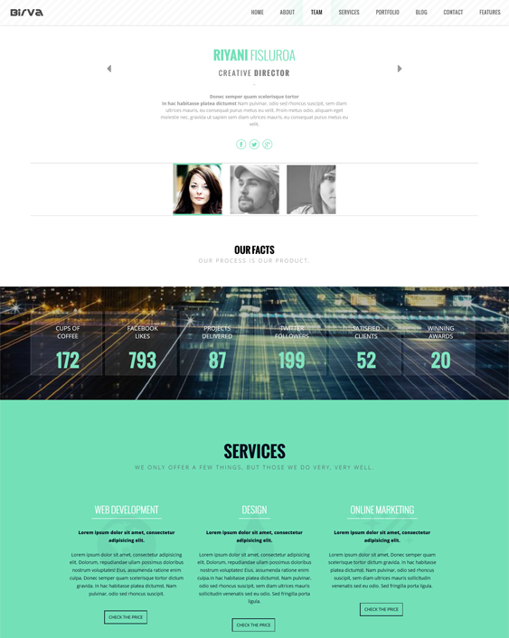 birva one page drupal theme