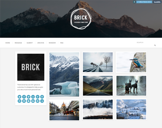 brick masonry tumblr theme