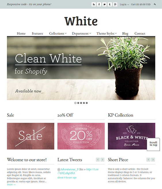 clean minimal shopify theme