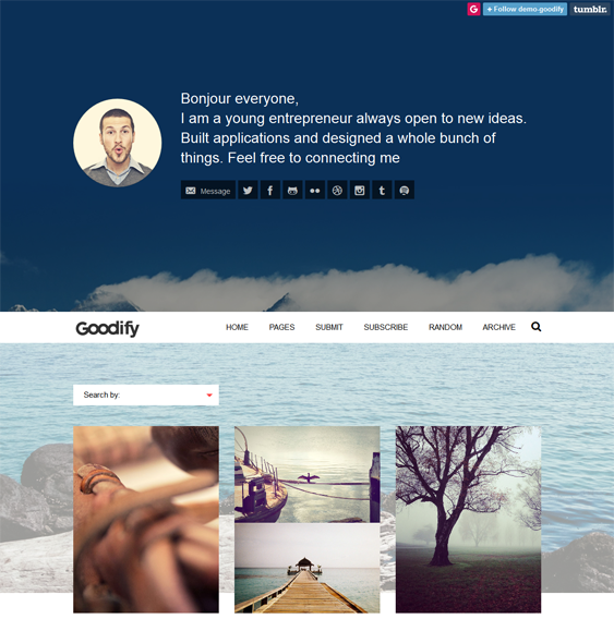 goodify masonry tumblr theme