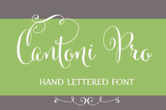 Cantoni Pro Hand Lettered Font