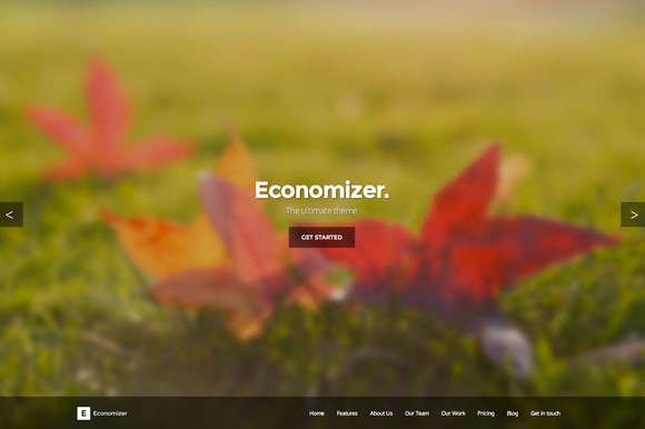 Economizer HTML5/CSS3 One Page Theme