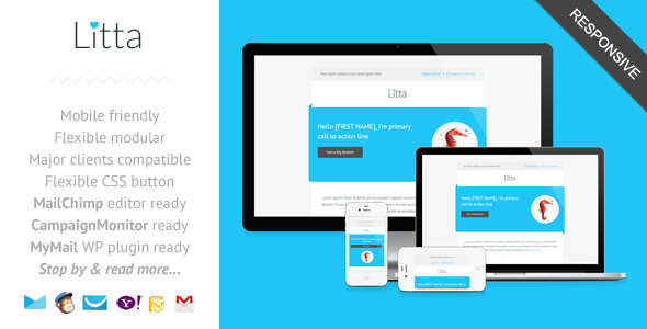 Litta - Clean Responsive Newsletter Template