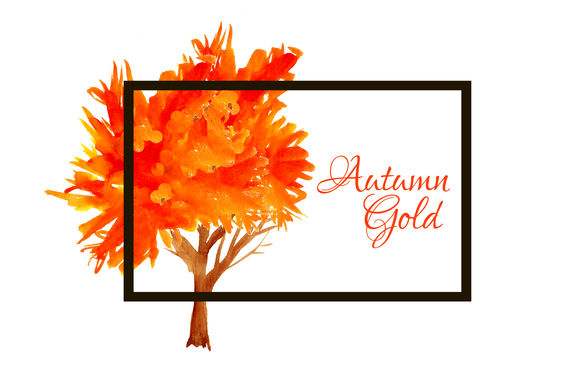 Autumn Gold Trees by Rasveta is available from CreativeMarket for $8.