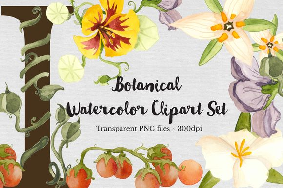 Botanical Watercolor Set by TheAutumnRabbit is available from CreativeMarket for $15.