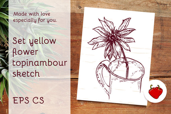 Set Flower Topinambour Sketch by Klepsidra_day is available from CreativeMarket for $4.