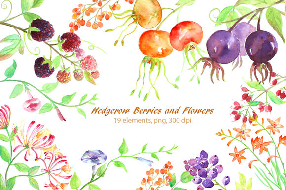 Watercolor Hedgerow Clipart by CornerCroft is available from CreativeMarket for $6.