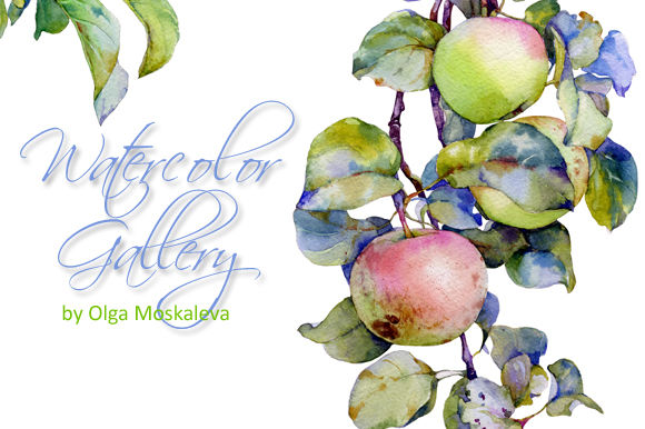 Watercolor Apples by OlgaMoskaleva is available from CreativeMarket for $10.