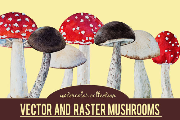 Watercolor Mushrooms by LembrikArtworks is available from CreativeMarket for $9.