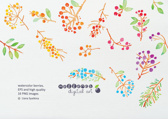 Watercolor Berries by Mellenes is available from CreativeMarket for $7.