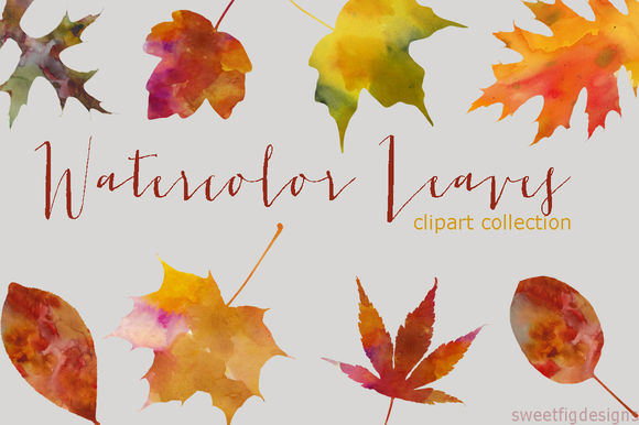 Watercolor Leaves Clipart Collection by Cherylwarrick is available from CreativeMarket for $14.