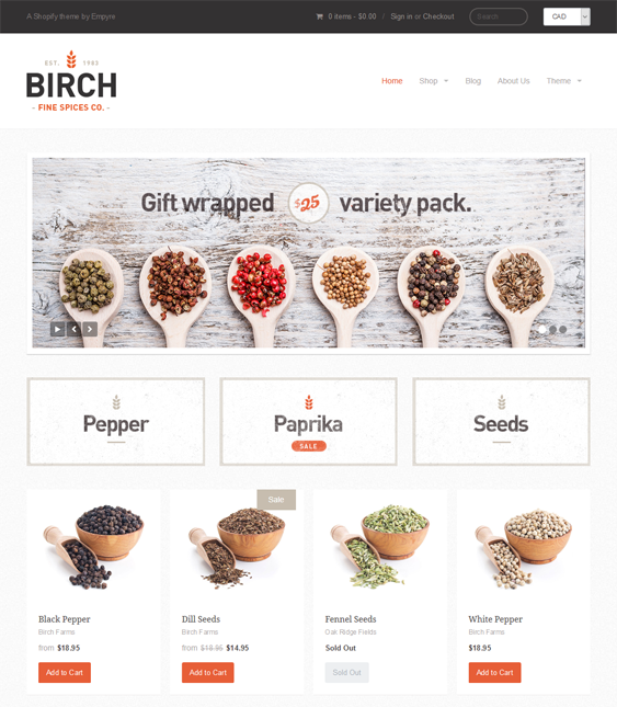 providence clean shopify themes