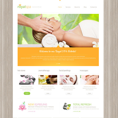 Beauty Responsive WordPress Theme (WordPress theme for hair and beauty salons and spas) Item Picture