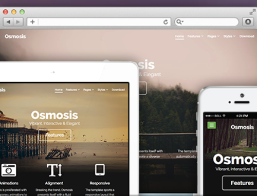 RocketTheme Launches 'Osmosis' Theme for WordPress
