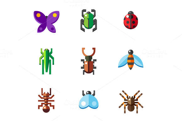 A set of flat insect bug icons