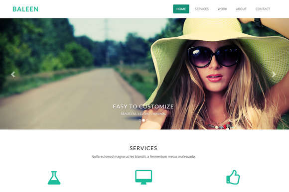 Baleen - One Page Bootstrap Template