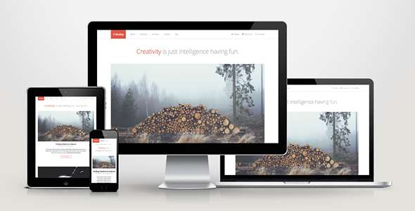 Develop - Responsive WordPress HTML5/CSS3 Theme