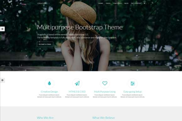 Multipurpose Template - Dragonfly