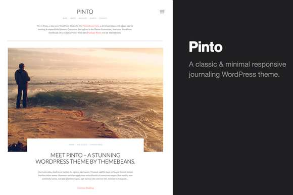 Pinto | Blog/Photo Theme