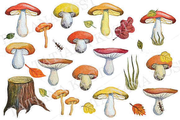Watercolor autumn mushrooms,leaves