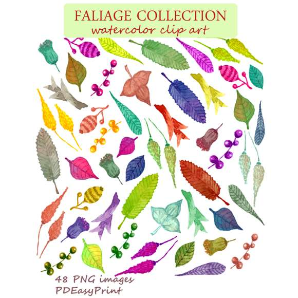 Watercolor leaves clipart, foliage