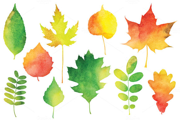 Vector Watercolor Leaves by PaperCards is available from CreativeMarket for $12.