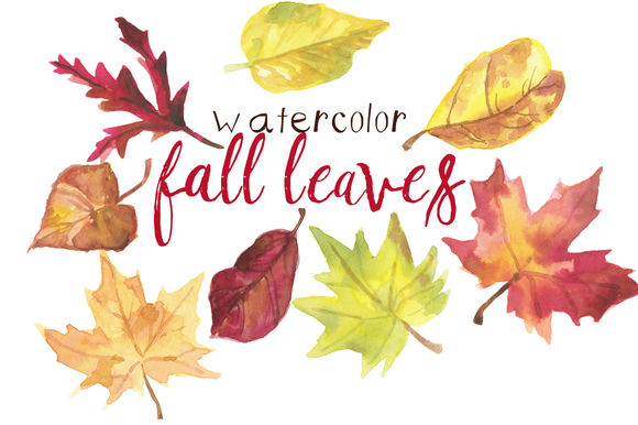Watercolor Fall Leaves by DigitalPressCreation is available from CreativeMarket for $18.