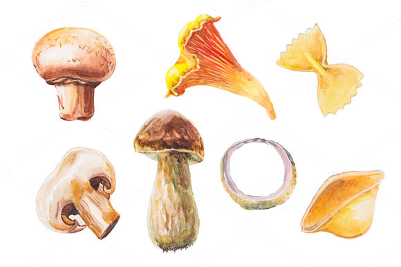 Watercolor Mushrooms Collection by Lenavetka87 is available from CreativeMarket for $8.