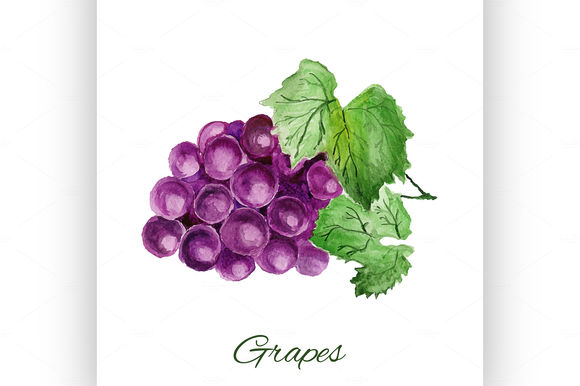 Grapes by Netkoff is available from CreativeMarket for $5.