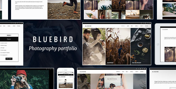 Bluebird by ThemeVillage (WordPress theme)