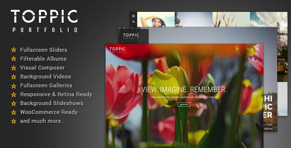 TopPic by Kotofey (WordPress theme)