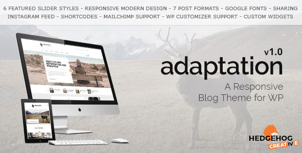 Adaptation by HedgehogCreative (video blog WordPress theme)