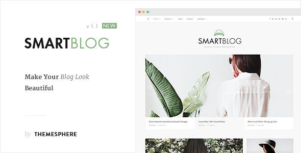 Blog Theme by ThemeSphere (video blog WordPress theme)