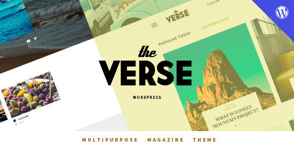 Verse by Wellthemes (video blog WordPress theme)