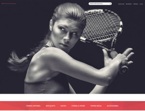 15 of the Best Magento Themes for Sports Stores