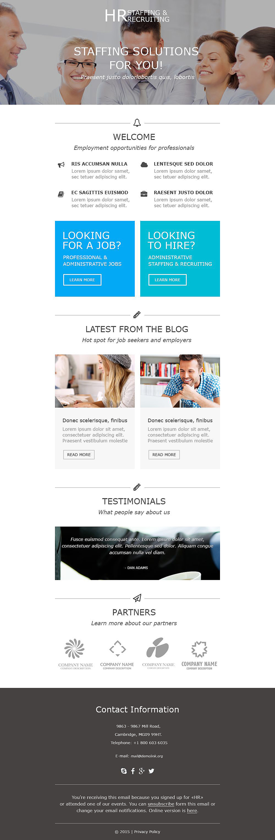 Consulting (responsive newsletter theme) Item Picture
