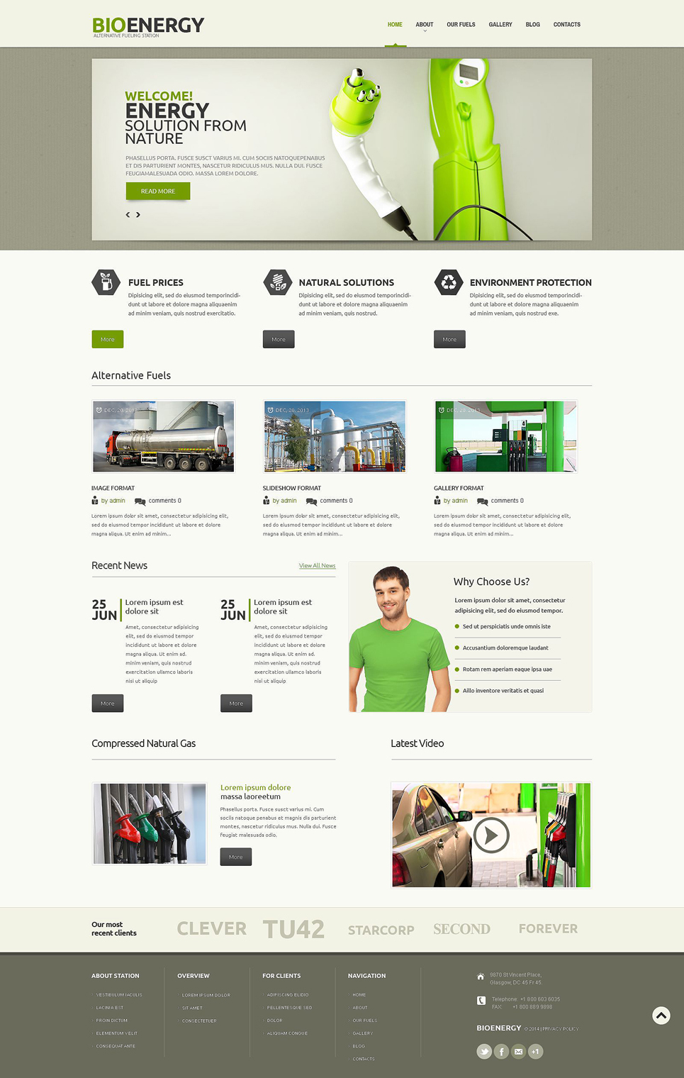 Biofuel (theme for WordPress) Item Picture