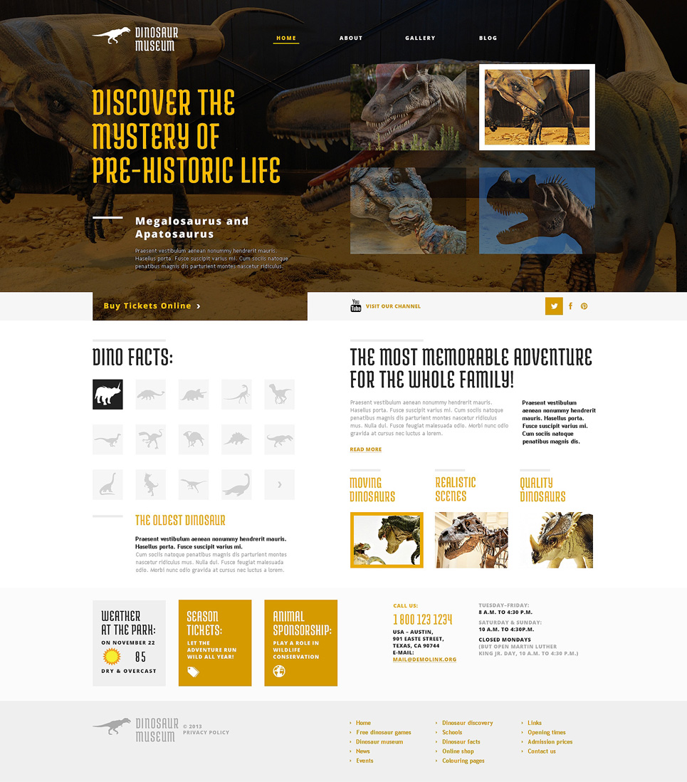 Discovering the Unknown (WordPress theme) Item Picture