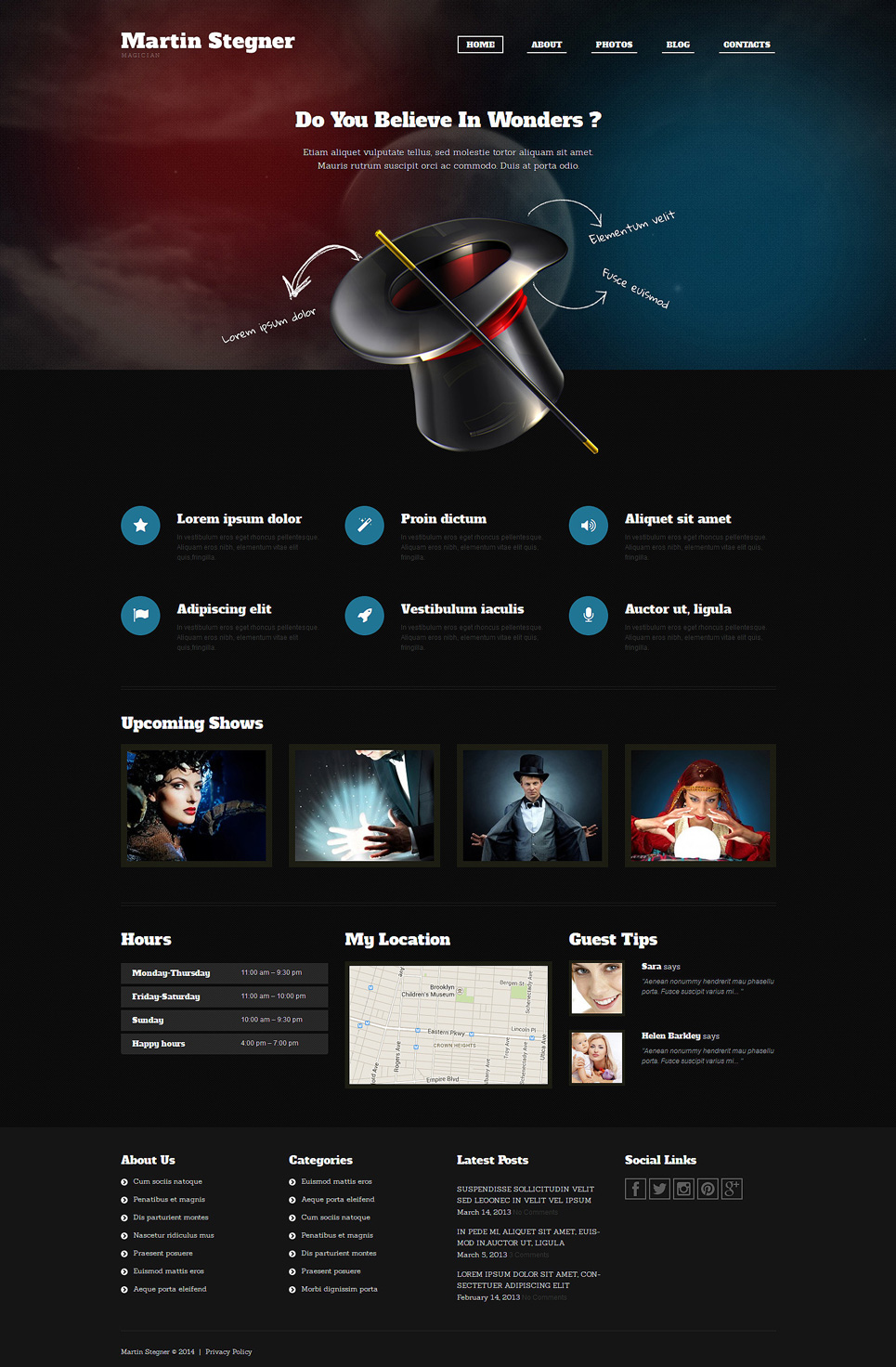 Magician (theme for your WordPress site) Item Picture