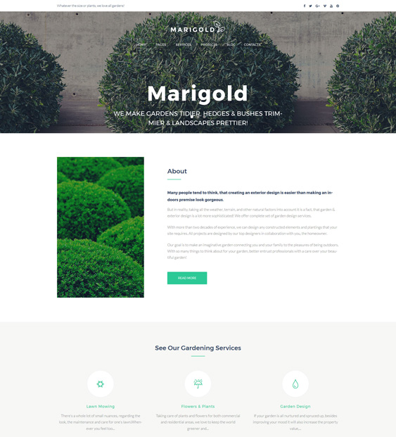 10 Of The Best Wordpress Themes For Gardeners Landscaping