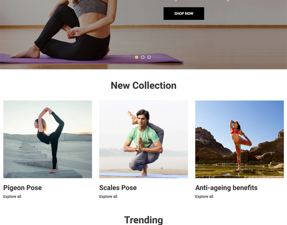 Shopify Themes For Yoga Stores feature