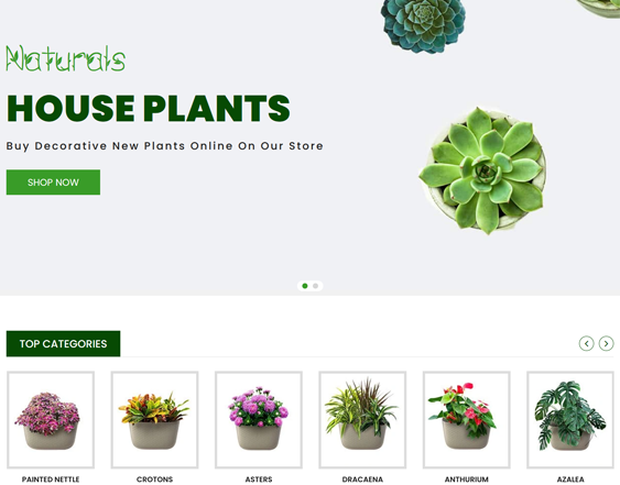 Shopify Themes For Selling House Plants feature