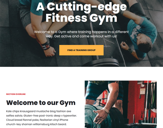 gym fitness wordpress themes feature