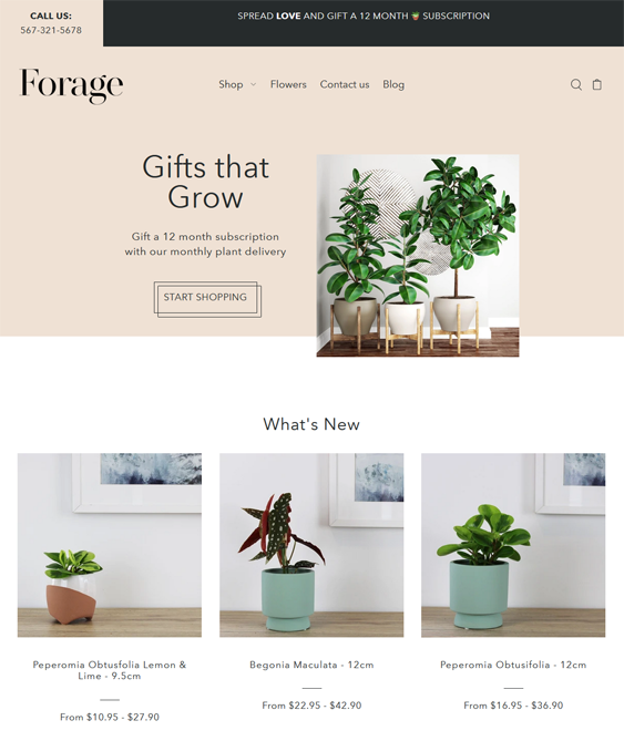 Shopify Themes For Selling Plants And Flowers feature