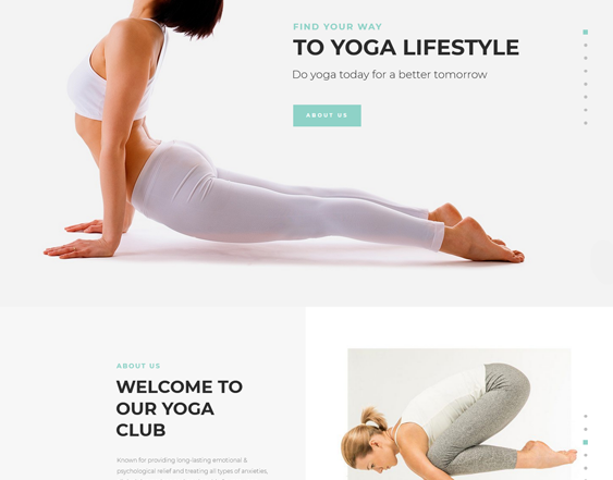 WordPress Themes For Yoga Teachers And Classes feature